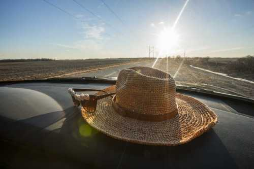 Don't Let the Heat Get to You – Stay Cool in Your Car Using These Simple Tips